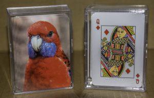Crimson Rosella Playing Cards